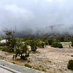 Highland Arar (Juniper) Forest
