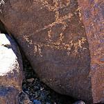 Huntsman Petroglyph